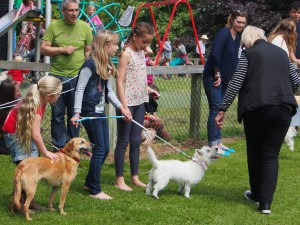DOG SHOW WITH ORGANIZER VAL PRITCHARD ON THE RIGHT